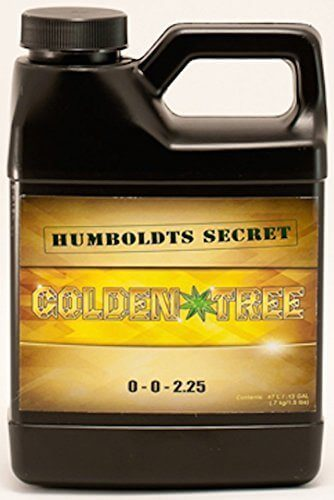 Humboldt's Secret Golden Tree