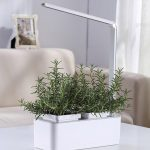 Smart Hydroponics Indoor Herb Garden Kit By SavvyGrow- Growing System