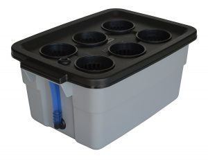 REPLACEMENT DWC Hydroponic Grow Box and Lid