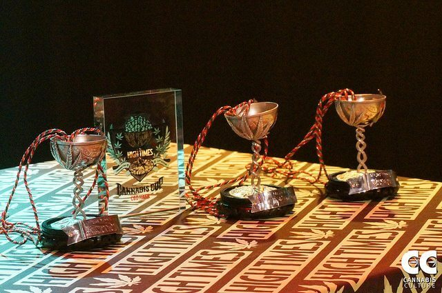 Cannabis Cup trophies