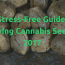 Buying Cannabis Seeds: Your Stress-Free Guide 2017