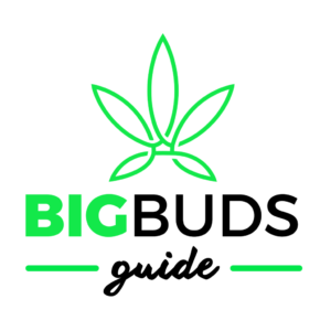 Big Buds Guide logo