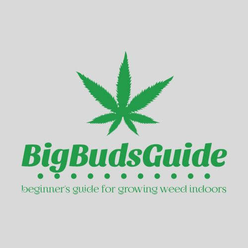 Big Buds Guide - Beginner's Guide for Growing Weed Indoors