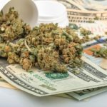 more profit from cannabis